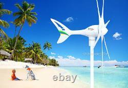 Apollo MAX 550 W 12 V DC Magnet PMA Wind Turbine Generator 6Blade+ Rectifier
