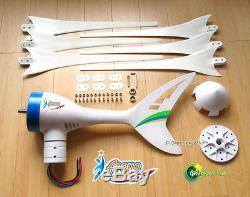 650 W 12 V Wind Turbine Générateur + 1000 W + 600 W Contrôleur Inverter + 100 W Solaire