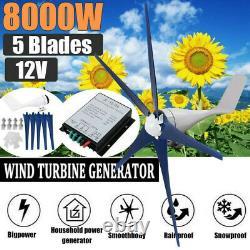 8000w Max Power 5 Lames DC 12v Générateur De Turbine À Vent Avec Contrôleur De Charge