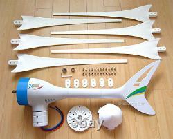 Apollo Max 800 W Watt 12 V DC Aimant Pma Éolienne Générateur 6blade + Redresseur